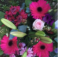 cerise dream posy